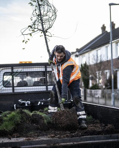 Man taking tree sapling from back of truck